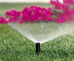 irrigatore in azione