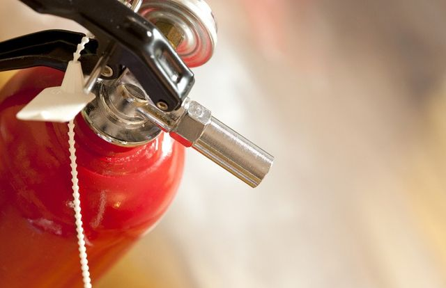 Dragon fire extinguisher