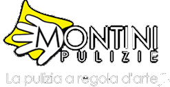 MONTINI GROUP