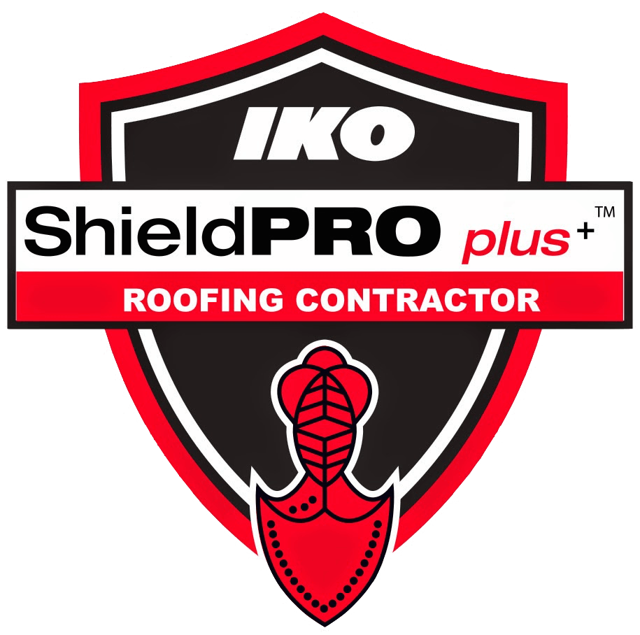 Roof Cleaning Springfield Or All Seasons Roofing Llc