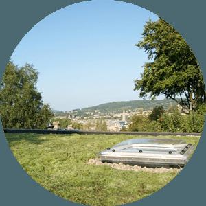 A flat green roof