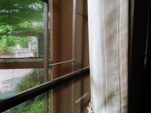 zanzariera e tenda per finestra
