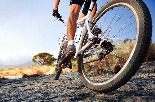 Gambe muscolose proprie di un ciclista di montagna