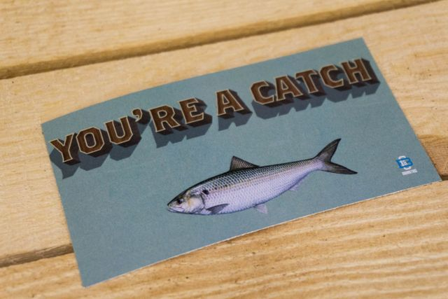 valentines-day-card-catch-fish-pun