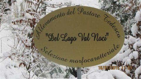 Insegna Del Lago Val Noci