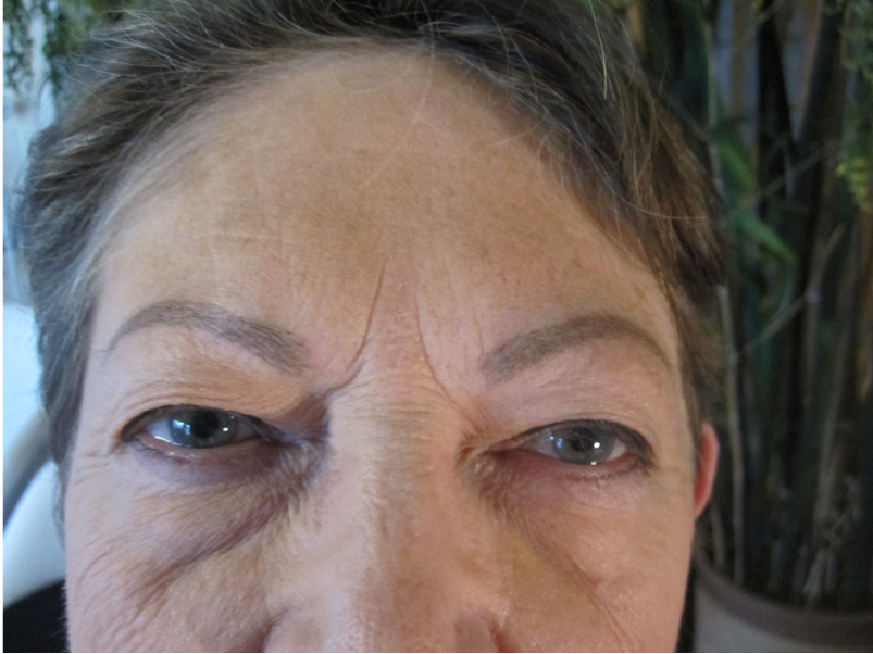Fair Oaks Permanent Makeup Eye Brows after