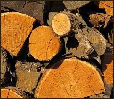 fornitura legno compensato