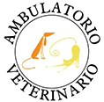 ambulatorio veterinario miscio