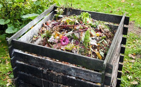 Rubbish removal and disposal