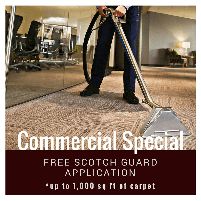 commercial carpet cleaning special in san diego