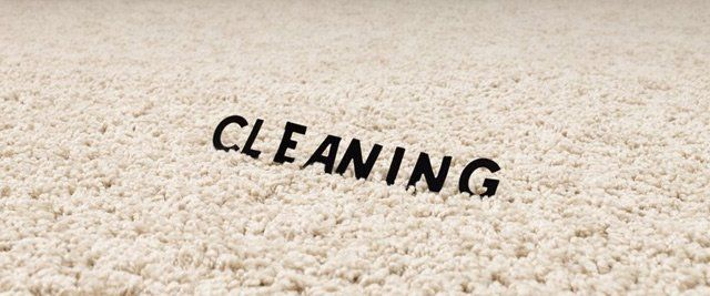 Carpet Cleaning And More Salt Lake City Ut Common Cents