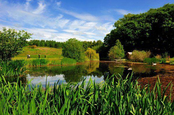 Strathmore valley golf course