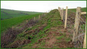 Argricultural fencing in a field