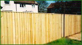 Timber fencing in a domestic garden
