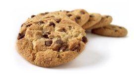 biscotti, biscotti al cioccolato