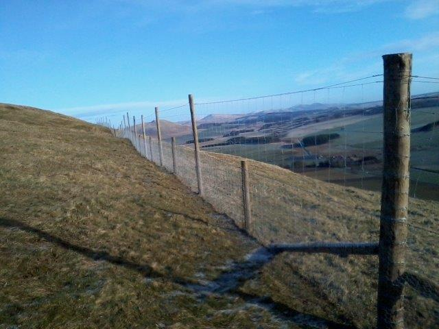 Contact us for agricultural fencing in Peebles