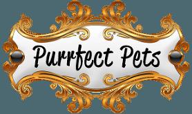 Purrfect Pets Company Logo