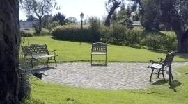 giardino con sentiero in pietra