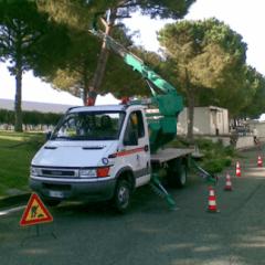 servizio di manutenzione del verde