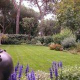 giardino privato con prato rasato