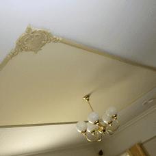 ornamental ceiling plaster