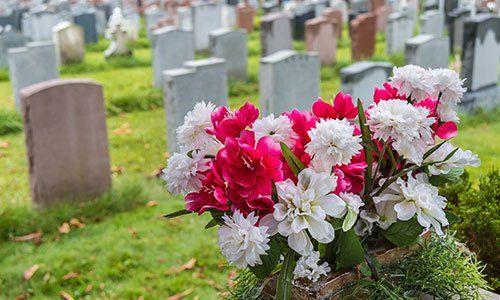 Lapidi in un cimitero in autunno con fiori in primo piano