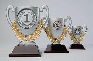 Trophy for winners