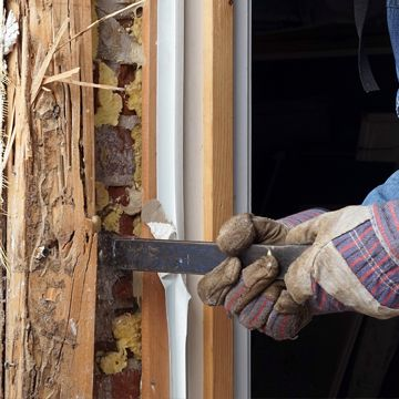 Removing wood damaged by termites