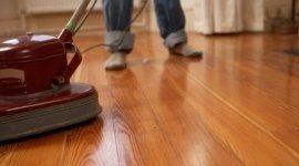 pulizia uffici, derattizzazione, imprese di pulizia