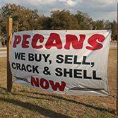 Gourmet Pecans Aiken, SC