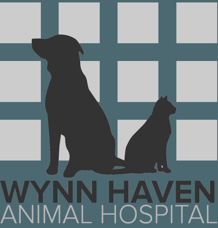 Animal Hospital Fort Walton Beach Fl