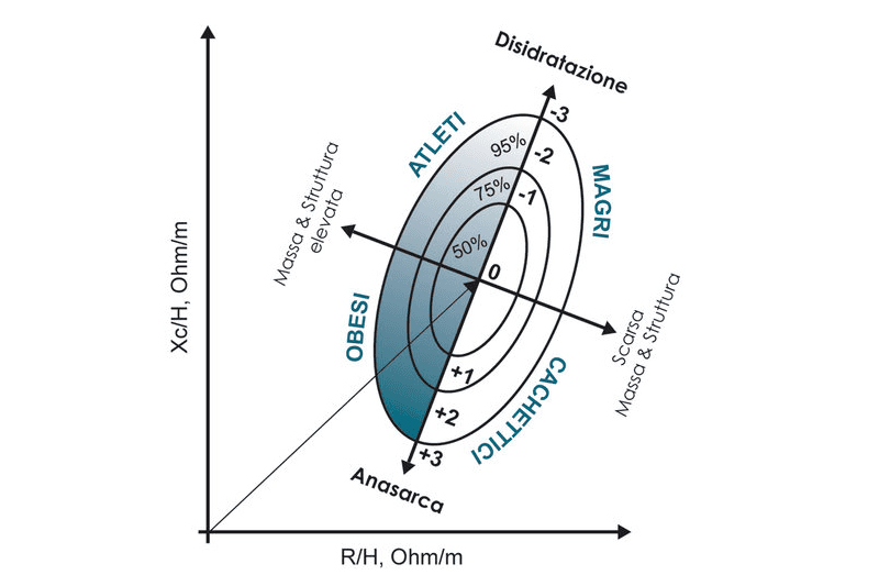 valutazione della composizione corporea