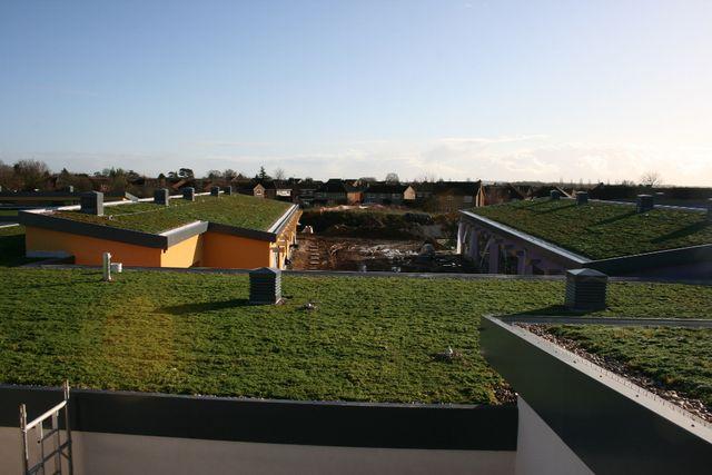 Garden roofing