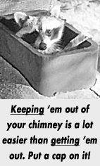 Chimney Sweeps Bradford, PA