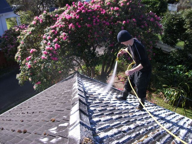 quality roofing services in Wellington