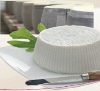 formaggio fresco su un piatto