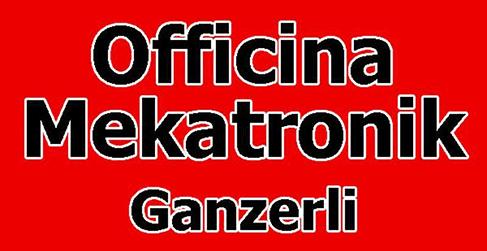 OFFICINA MEKATRONIK GANZERLI - LOGO