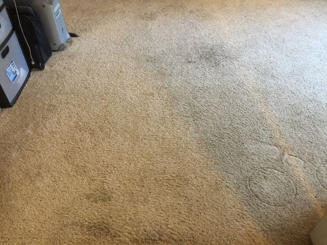 Carpet Cleaning Sacramento Before