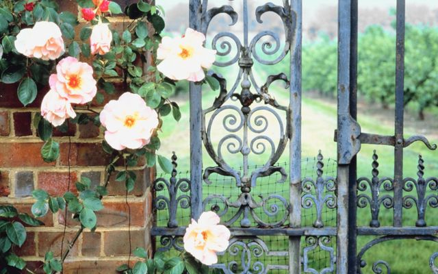 A sample of the designs offered for our railings and gates in Lexington, SC