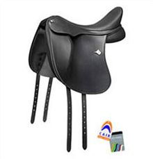Experienced saddle fitters