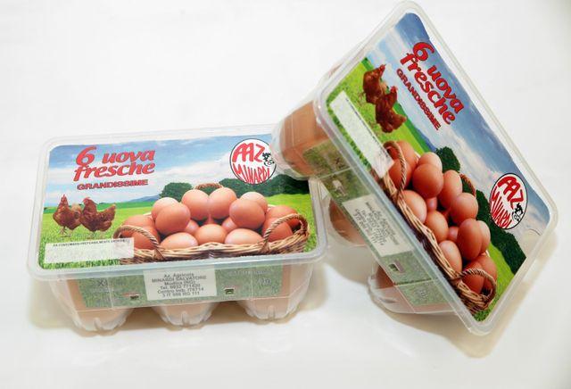 Confezione da 6 uova bianche