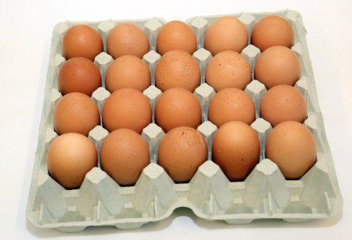 Cartone da 20 uova