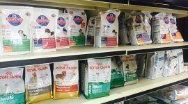 alimenti per animali, crocchette per cani, carne in scatola per cani