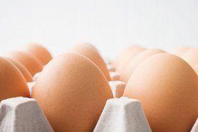 wholesale eggs - Bournemouth, Dorset - Claytons Eggs -