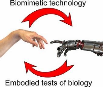 Tactile Robotics