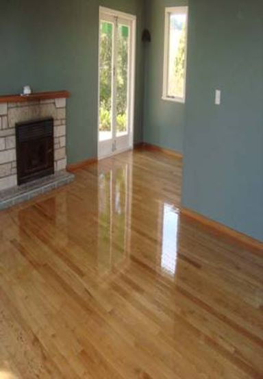 Quality floor polishing in Tauranga