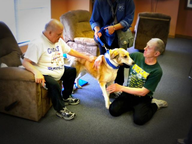 Dogs visit two men at one of the adult day care centers in Onalaska, WI
