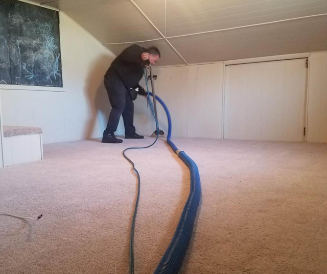 Professional Carpet Cleaner Knoxville Tn The Master S