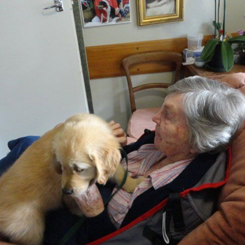 Old women sitting with her dog