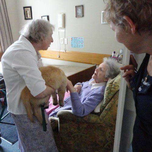 Old ladies enjoying time with animals